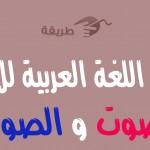 طريقة تحميل برنامج تعليم اللغة العربية للاطفال