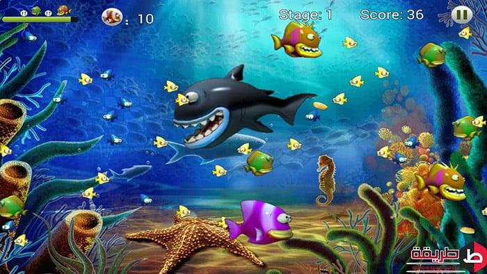 تحميل لعبة السمكة 5